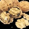 Hạt óc chó - thực phẩm an toàn, bổ dưỡng cho trí não