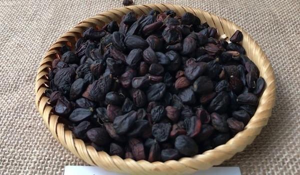 Dổi nếp có mùi thơm nồng, hạt nhỏ, kích thước hạt không đồng đều