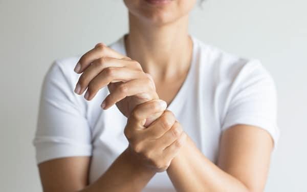 Hạt cây dổi giúp giảm đau nhức xương khớp