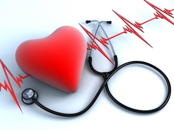 Bạn có thể phòng ngừa bệnh tim mạch bằng hột é