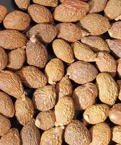 Theo Đông y, hạt ươi có vị ngọt, tính hàn, lợi về kinh phế...