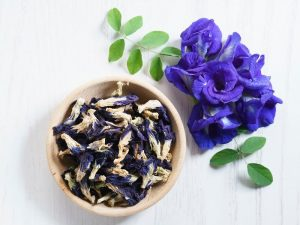 Hoa đậu biếc và những công dụng tuyệt vời cho sức khỏe