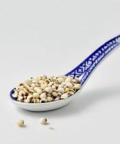 Hạt ý dĩ đang được dùng trong nhiều món ăn, bài thuốc